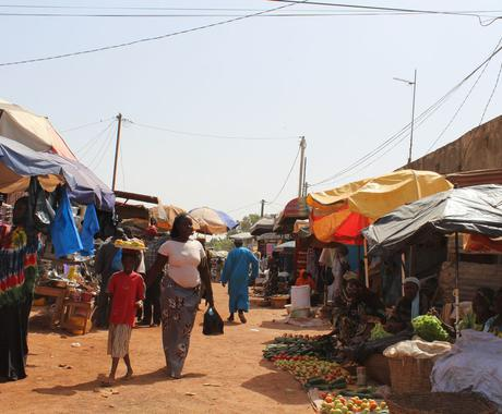 最後のブルーオーシャン!アフリカ起業ツアー シリーズ1 イメージ1