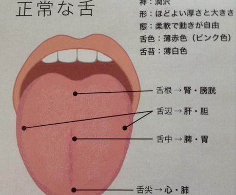 中医学視点であなたにオススメの食材をご提案します 舌の状態や顔色からあなたにオススメの食材をご提案致します。 イメージ1